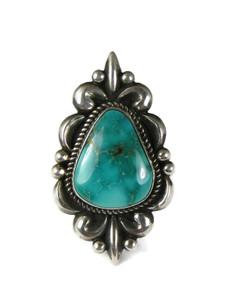 Royston Turquoise Ring Size 8 by Albert Jake (RG5181)