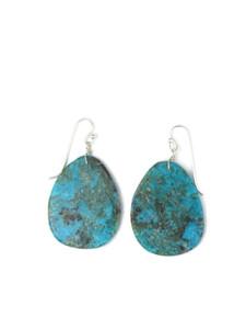 Turquoise Slab Earrings (ER5902)