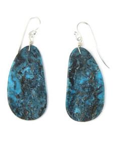 Turquoise Slab Earrings (ER5907)