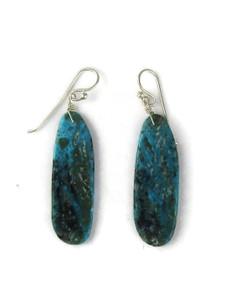 Turquoise Slab Earrings (ER5915)