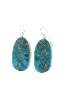 Turquoise Slab Earrings (ER5927)
