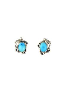 Sleeping Beauty Turquoise Post Earrings (ER5963)