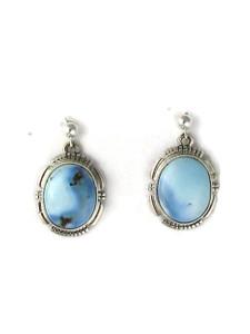 Golden Hills Turquoise Earrings (ER5953)