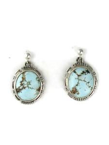 Golden Hills Turquoise Earrings (ER5954)