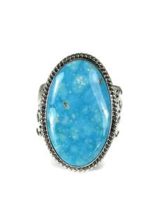 Kingman Turquoise Ring Size 12 (RG6044)