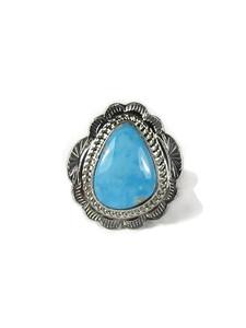 Kingman Turquoise Ring Size 7 (RG6067)