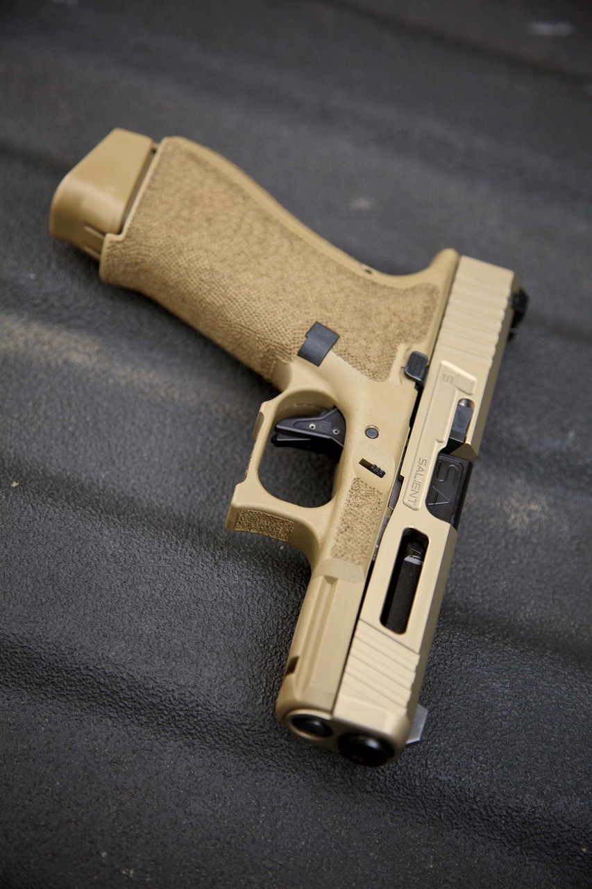 Salient Arms G19X Tier One FDE