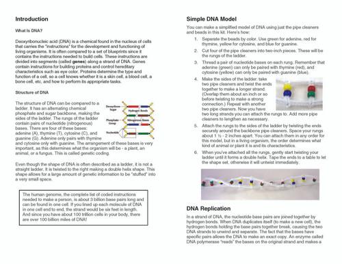 Simple DNA Model Kit