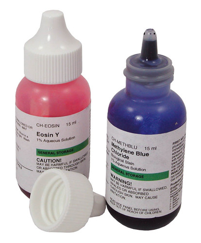 methylene blue stain and eosin y stain