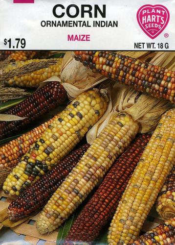 Seeds, corn, pack