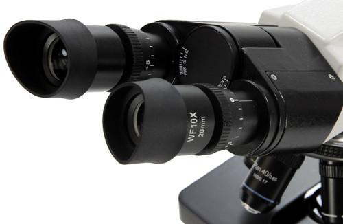 binocular microscope with two eyepiece Siedentopf binocular head