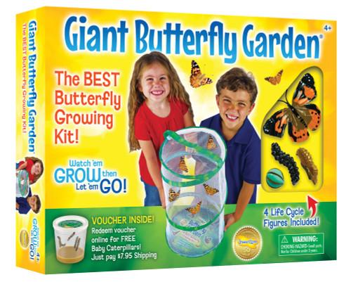 giant butterfly garden box
