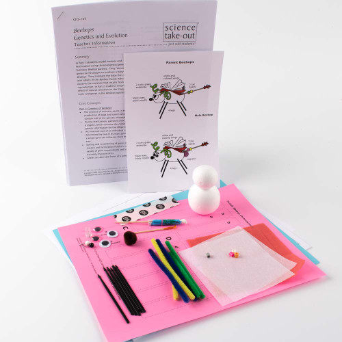 Beebops Genetics and Evolution Kit