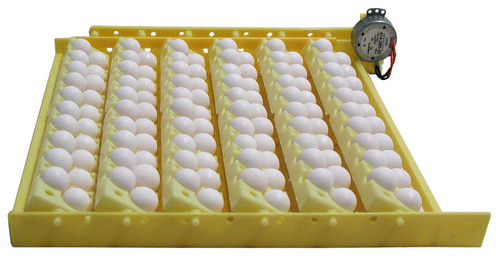 Hova-bator Automatic Egg Turner