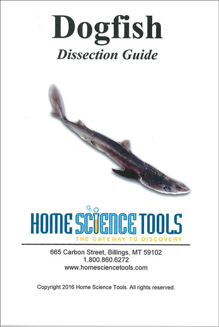 Shark Dissection Guide, basic
