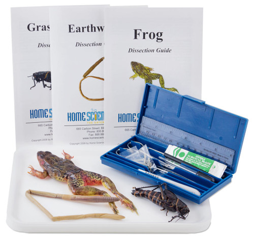 Introductory Dissection Kit