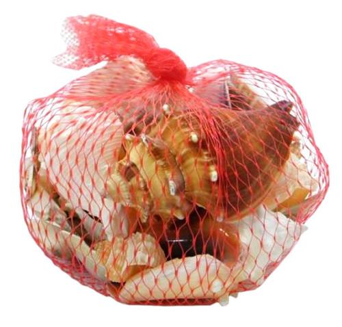 Seashell Pack