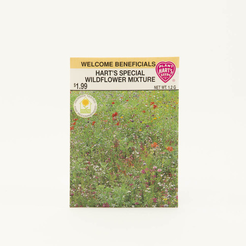 Seeds, wildflower mix, pack