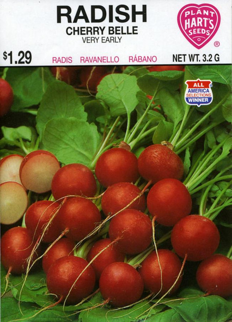 Seeds, radish, pack