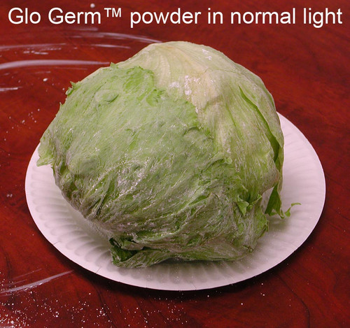 Glo Germ Powder, 4 oz.