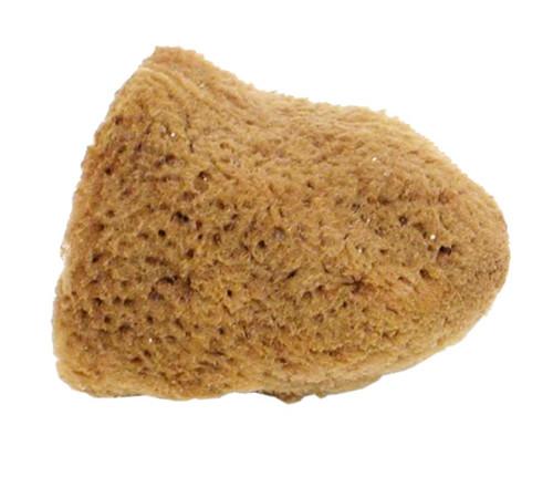 "Sponge, natural, 2"""