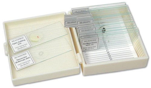 Apologia Biology Slide Set