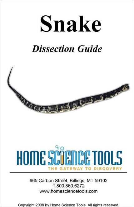 Snake Dissection Guide