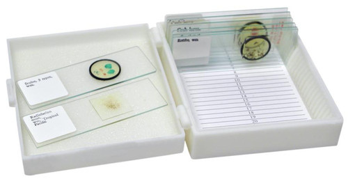 Microscope Kit for Apologia Marine Biology
