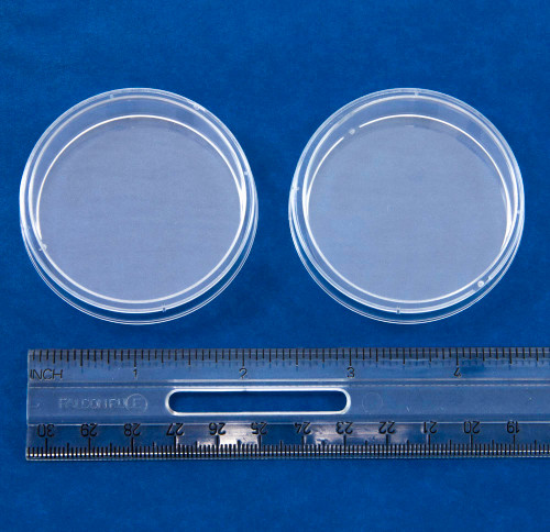 Petri Dishes, polystyrene, 55 x 15 mm, 20 pack