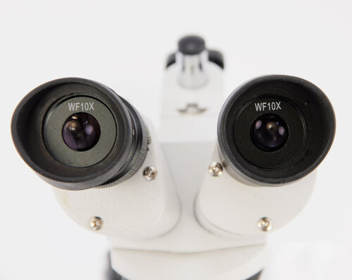 Dual Power Stereo Microscope, 10/30X Model