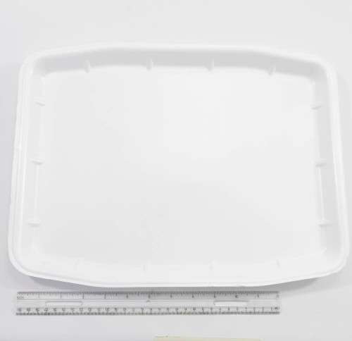 "Dissecting Tray, Styrofoam 12"" X 15"""