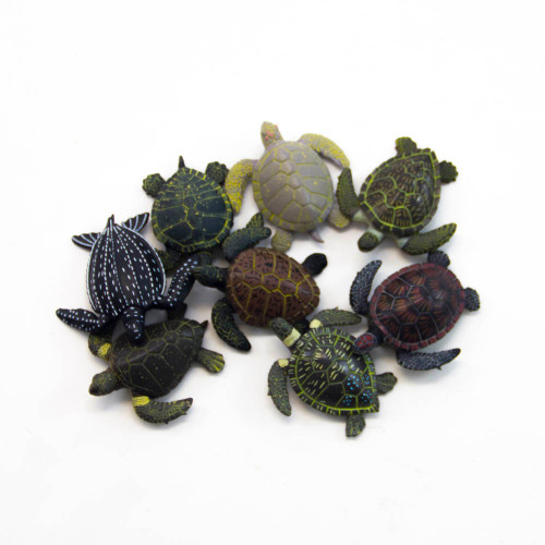 Sea Turtle Activity Kit