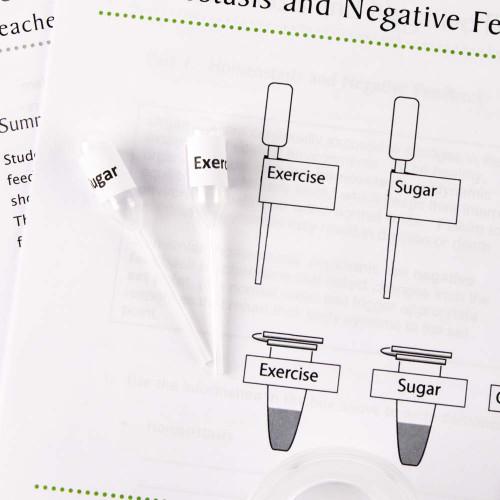 Keeping a Balance: Homeostasis and Negative Feedback Kit