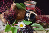 Elderberry (Black) Fruit Extract