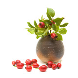"Rosehips Extract - ""Wondrous 'hips!"""