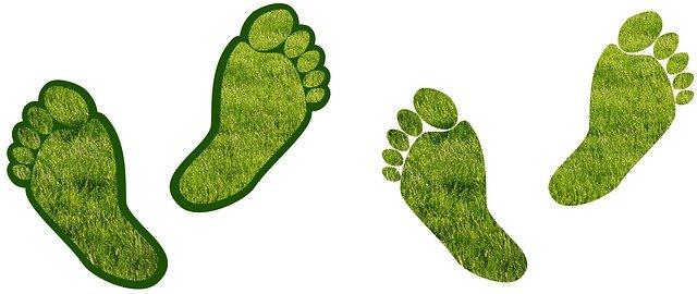 barefoot-gardening-assistance-990332-640.jpg