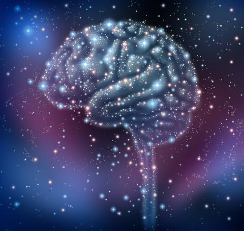 brain-dreamstime-xs-29322841.jpg