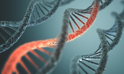dna-dreamstime-xs-38849150.jpg