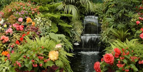 garden-of-eden-dreamstime-xs-4076574.jpg