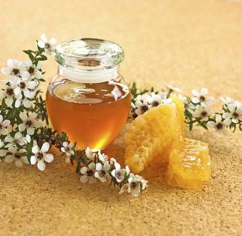 honey-dreamstime-xs-18490754.jpg
