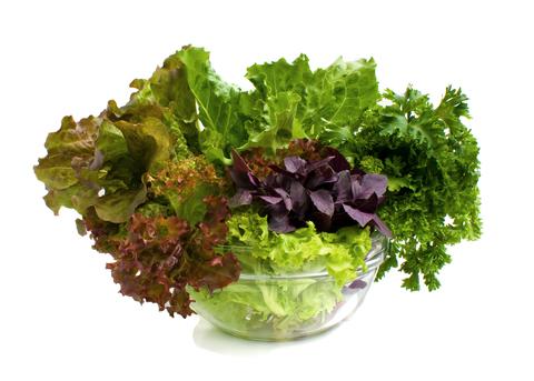 leafy-greens-dreamstime-xs-10262661.jpg