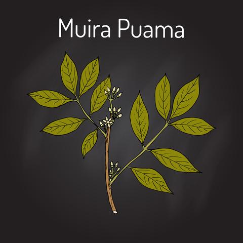 muira-p-dreamstime-xs-89789310.jpg