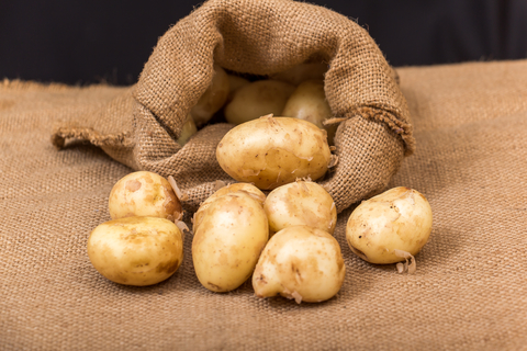potatoes-dreamstime-xs-54991385.jpg