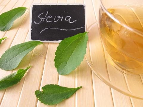 stevia-dreamstime-xs-25345760.jpg