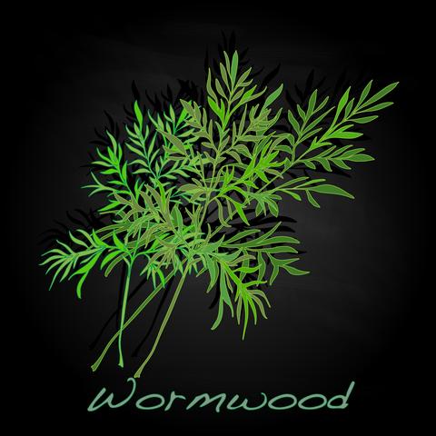 wormwood-dreamstime-xs-83740893.jpg