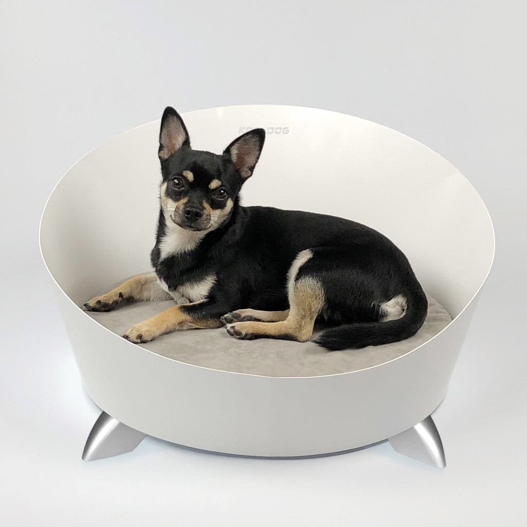 white-round-steel-modern-dog-bed-chihuahua