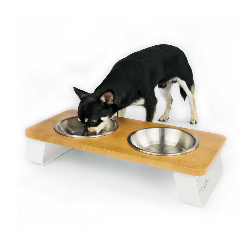 wood-top-white-metal-legs-raised-dog-feeder-chihuahua