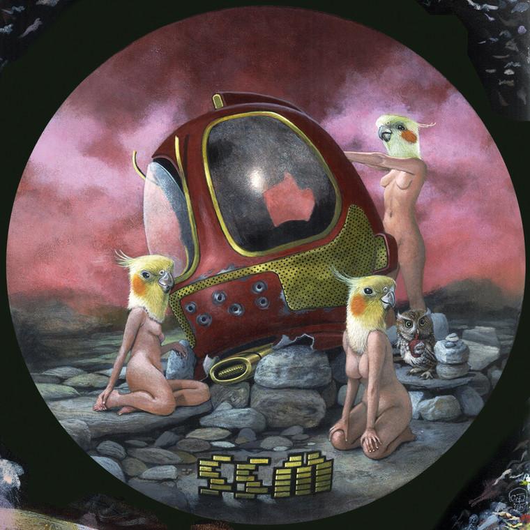 SSM- (Heavy Detroit 70s style  electro fuzz psych )Prod by Dan of THE BLACK KEYS!  -CD