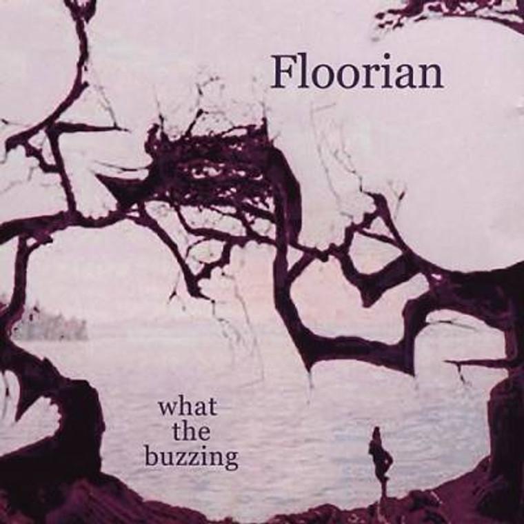 FLOORIAN -BRIAN JONESTOWN MASSACRE RELATED-PSYCH SPACE ROCK  LAST COPIES! CD