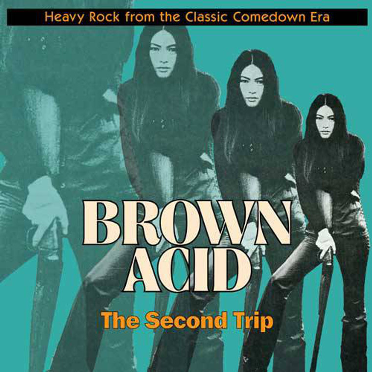 BROWN ACID  - THE SECOND TRIP (60S PSYCH RARITIES) BLACK  VINYL COMP LP